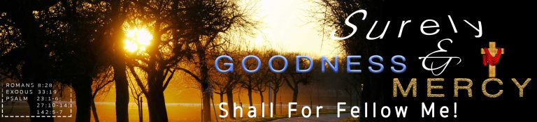 Surely Goodness And Mercy Shall Fellow Me