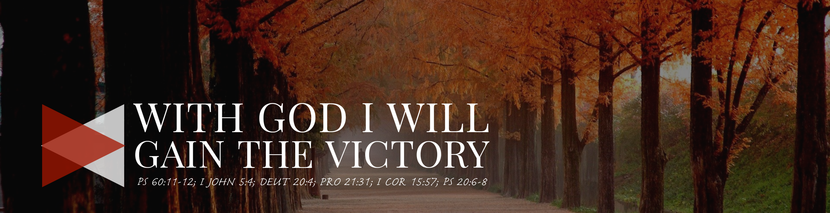 With God I Will Gain The Victory