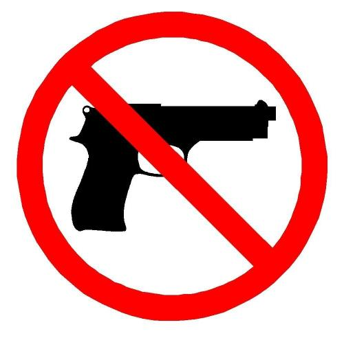 Well Spring Second Chance Center Bury our Guns not our people program