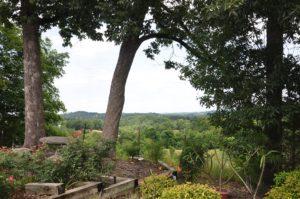 Smith View Vista