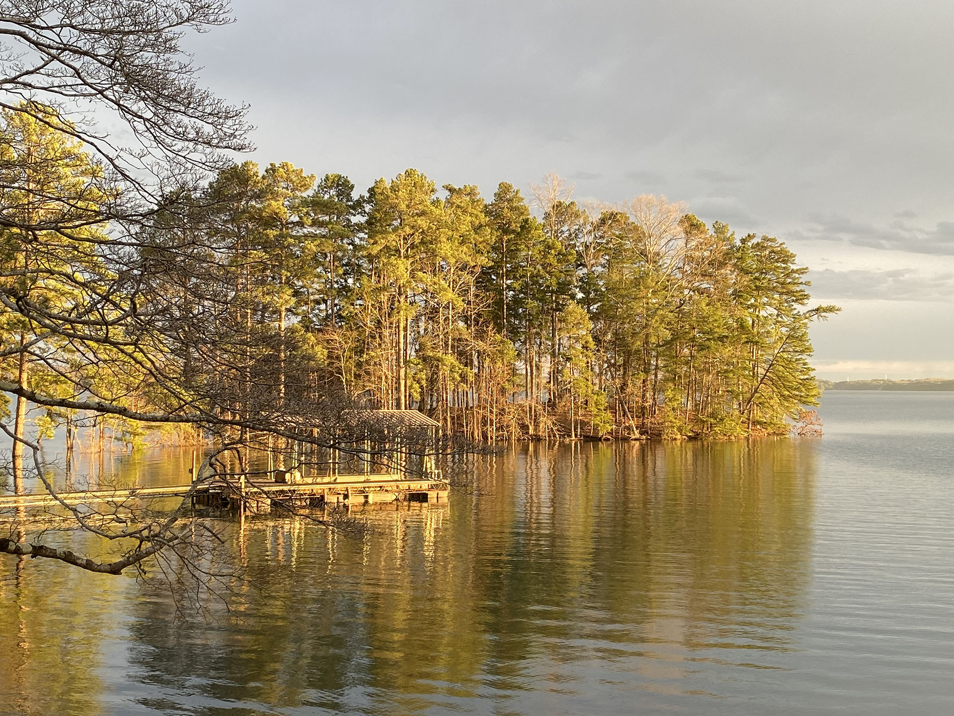 Dock and tree line at Lake Lanier