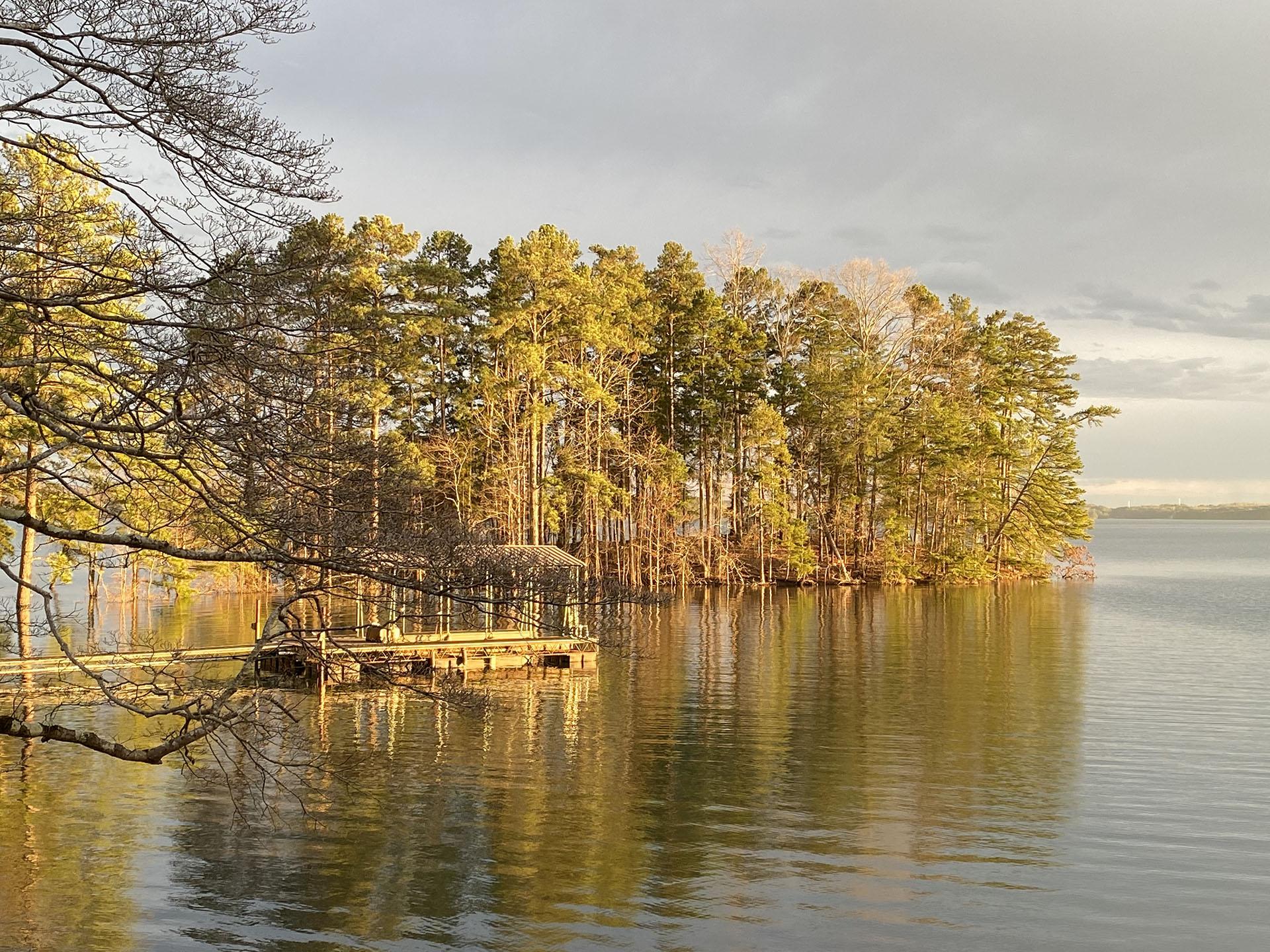 Dock and tree line at Lake Lanier