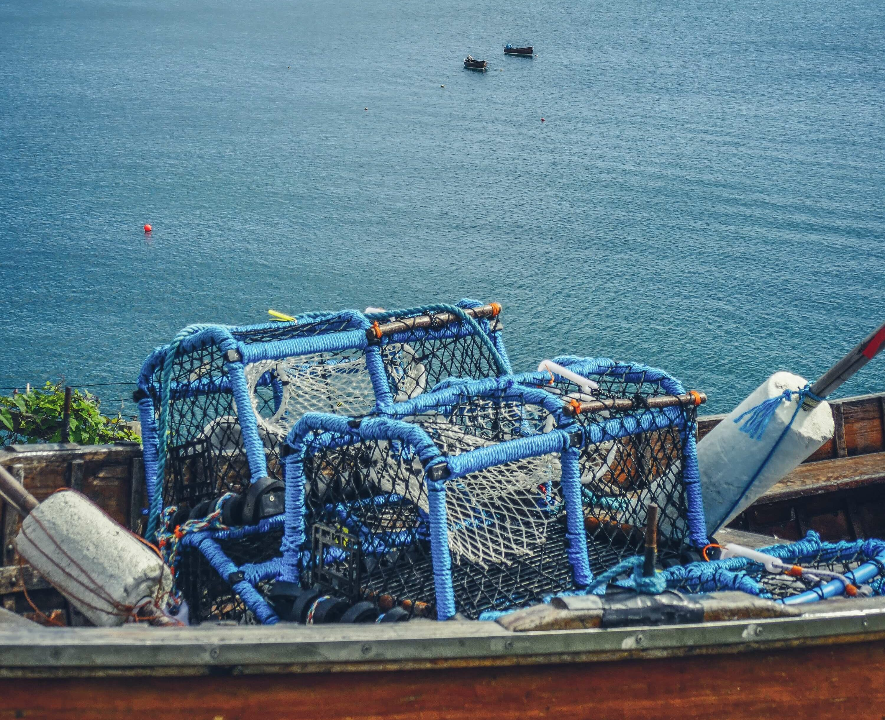 Sustainable or Responsible Seafood: Does it even matter?