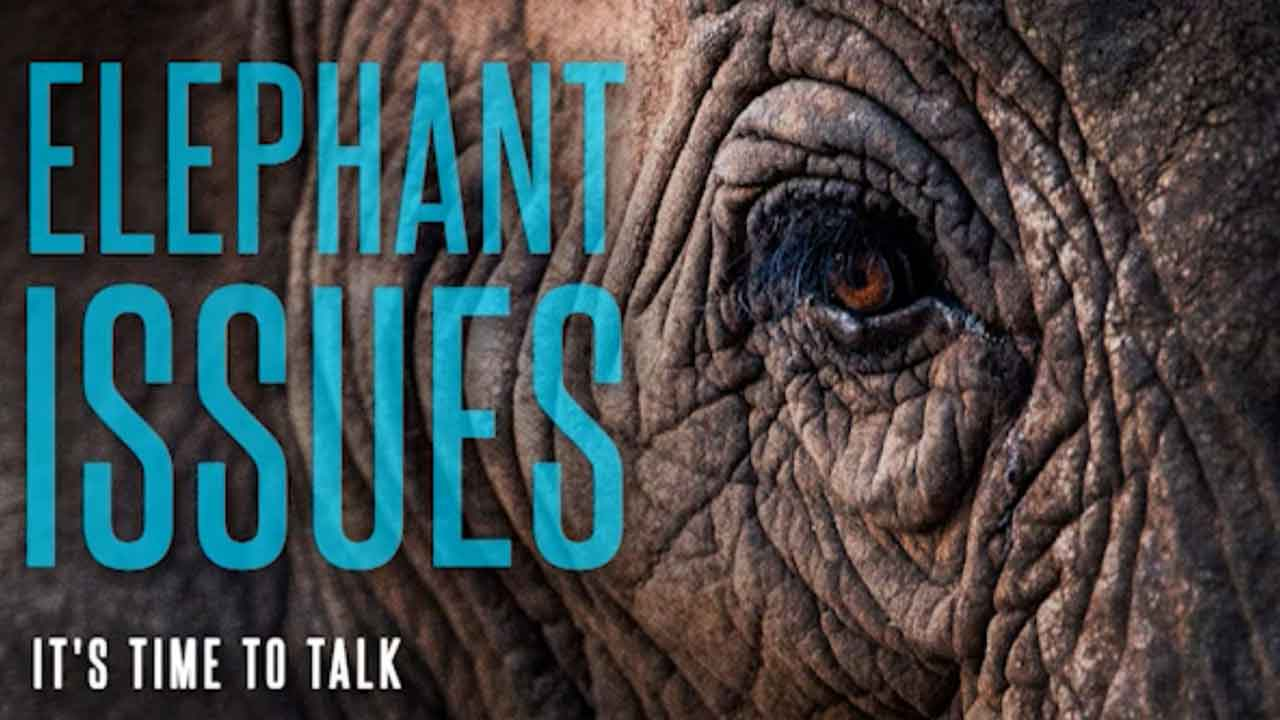Elephant Issues – Can we trust the Bible? | Dale Oquis