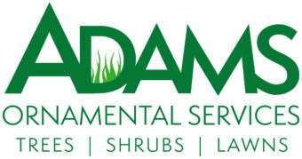 Adams Ornamental