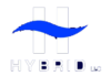 Hybrid Presents