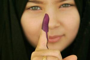 Voting Accuracy.jpg