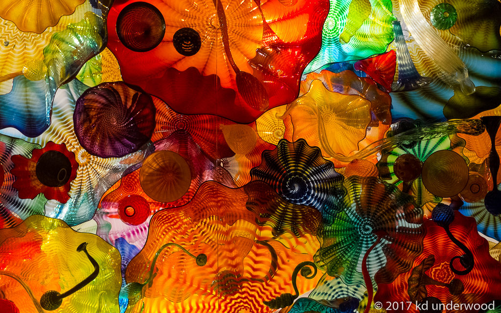 Dale Chihuly – Studio Glass Artist