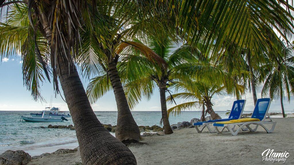 Sandy Beach Barbados