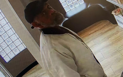 West Shore Regional Police want to identify suspect in theft