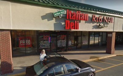 23 violations at Arthur AVE Italian Deli in Honesdale; Black mold like substance in ice machine cuber head and ice guard shield observed, live animal on premises