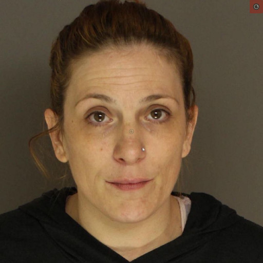 """Carisle Police: Woman arrested for solicitation to commit murder, """"enroute to carry out the assault"""""""