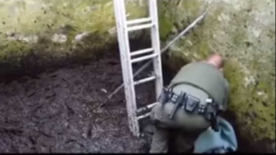 Video: State Game Warden helps fawn who fell into 8-foot deep cement water reservoir in Exeter Township