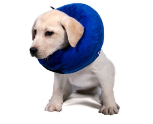Inflatable Soft Dog/Cat Cone for Recovery