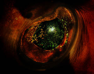 Eye of the Beholder Fish Eye
