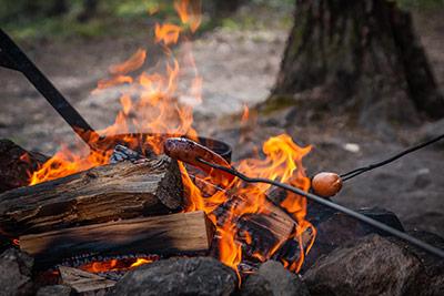 saucisses et guimauves sur un feu de camp