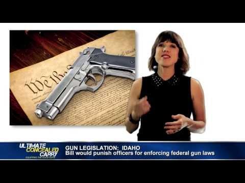 Concealed Carry News – Pro-Gun Legislation