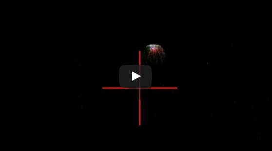 Unidentified Flying Object Recorded with ATN X-Sight