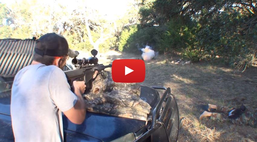 Bowling Ball vs 22LR 556 30-30 500 Magnum 50 BMG