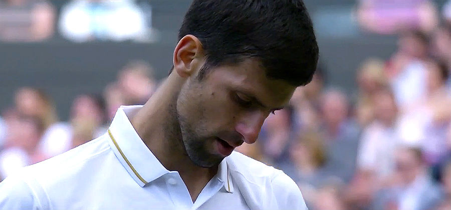 Novak Djokovic at Wimbledon 2016.