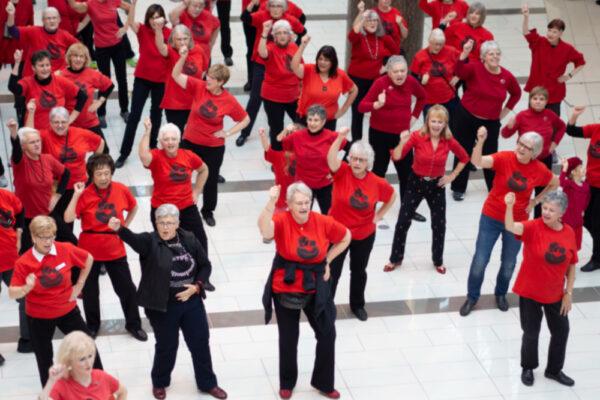 Grandmothers Flash Mobs, 2016