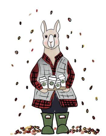 Llama and Lattes