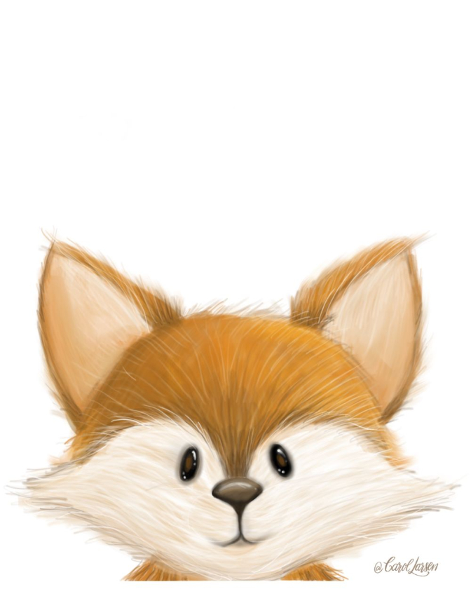 Name-Fox on White Background_Tag-Animals_Collection-All Seasons.