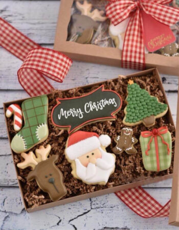 Merry Christmas in a Box