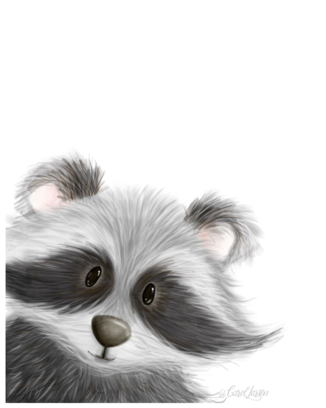 Name-Raccoon on White Background_Tag-Animals_Collection-All Seasons.