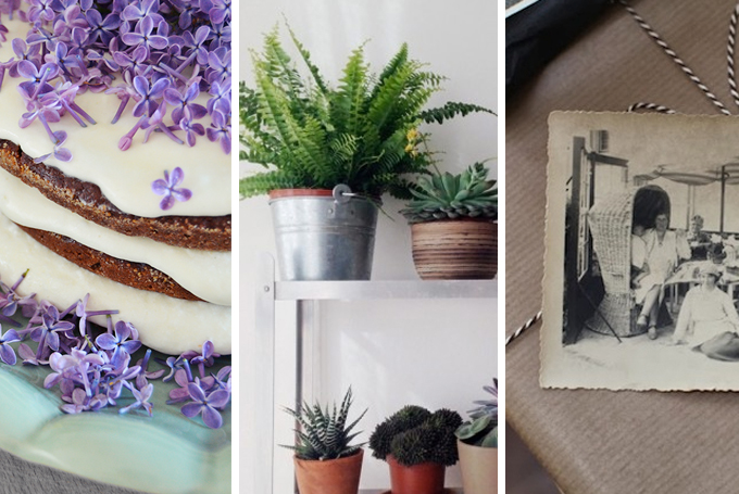 Monthly Blogger Crush: May
