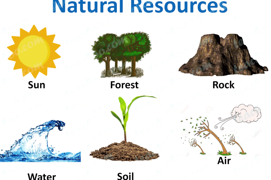 Natural resources types