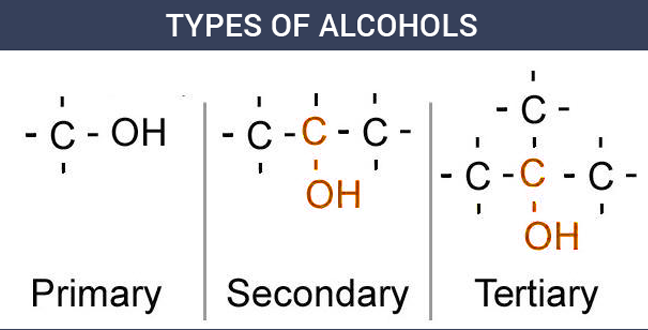 Types of Alcohols