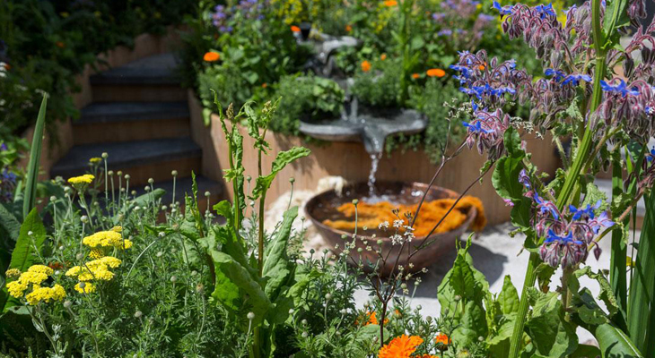 Tips To Manage Your Garden This Spring