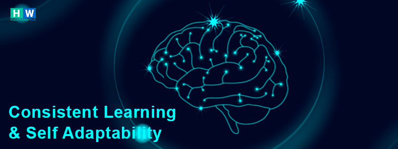 Self learning and adaptable artificial intelligent solution