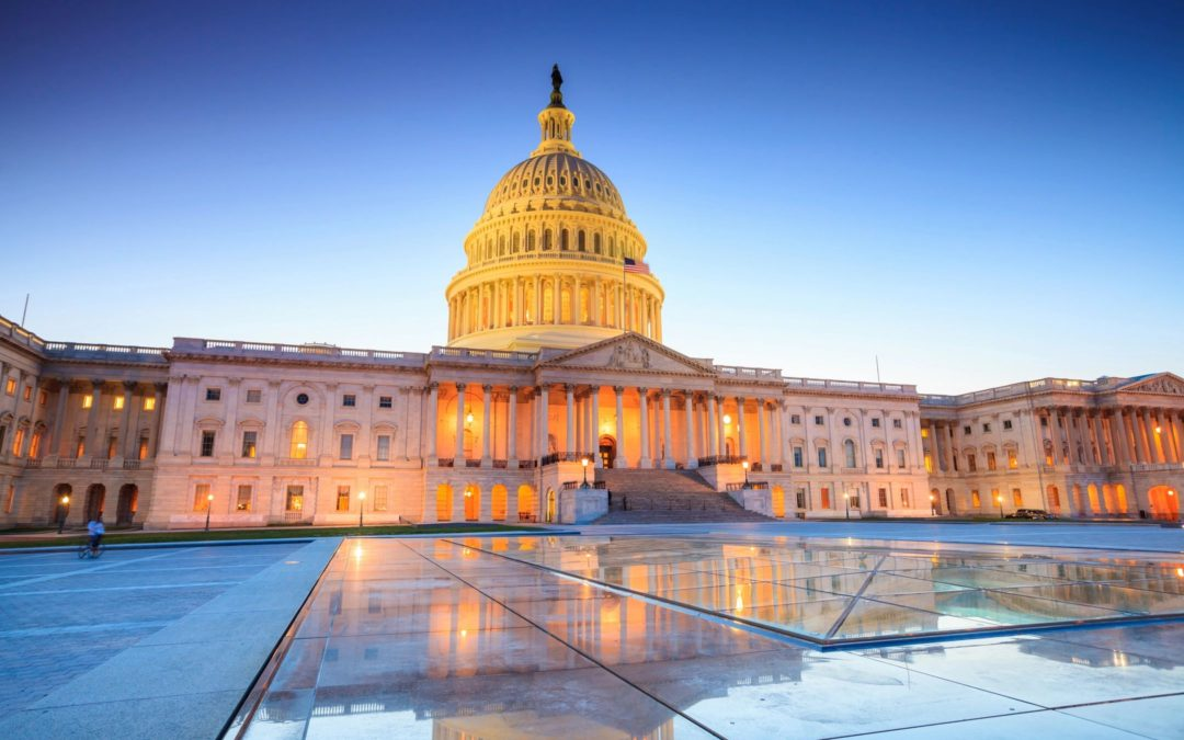 Picture of the Capitol - the correct maker of laws.