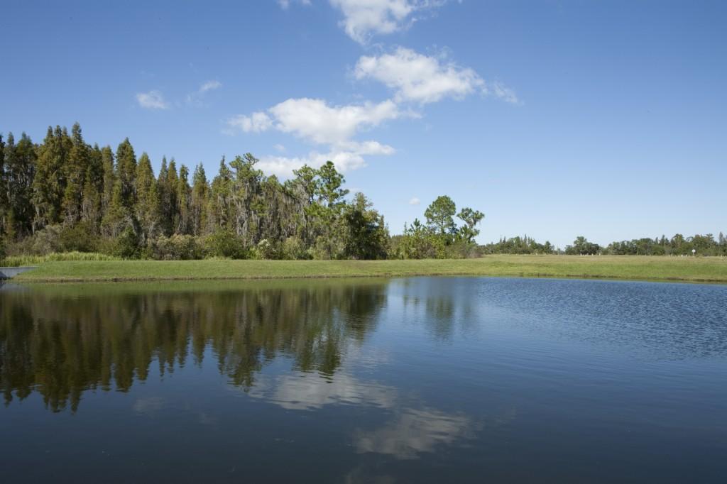Florida Lake_Lennar