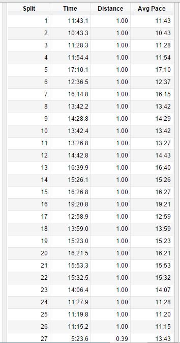 My NYC Marathon Splits