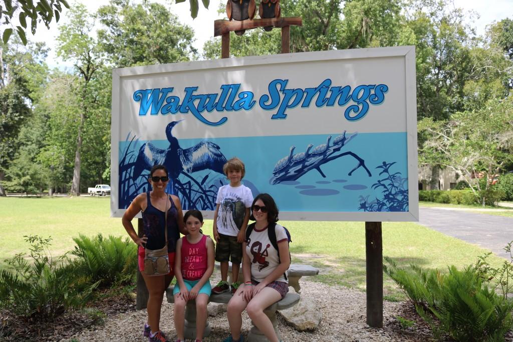 Wakula Springs - Run DMT