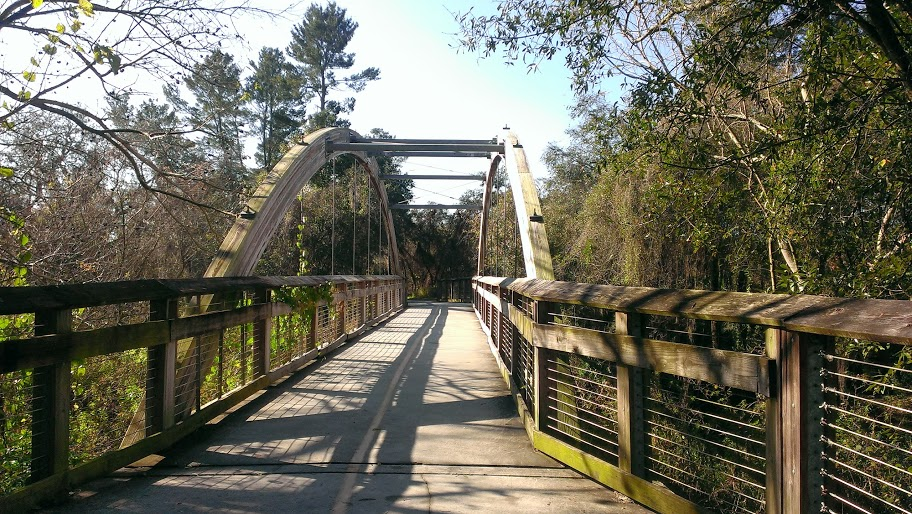 Upper Tampa Bay Trail