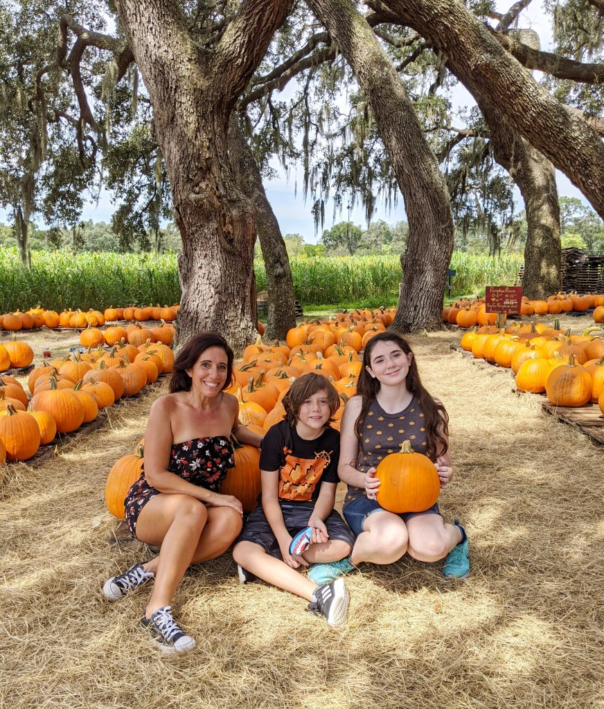 Sweetfield Pumpkin Patch