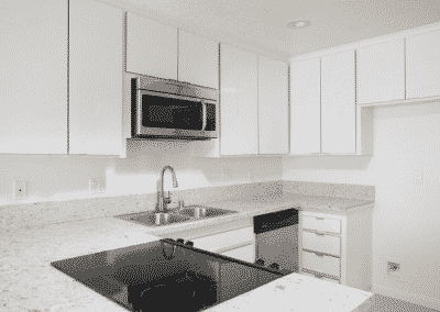 Stainless Steel Appliances & sparkling quartz counters