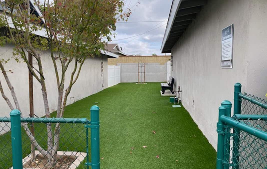 Fenced dog park with tree, grass, and a bench