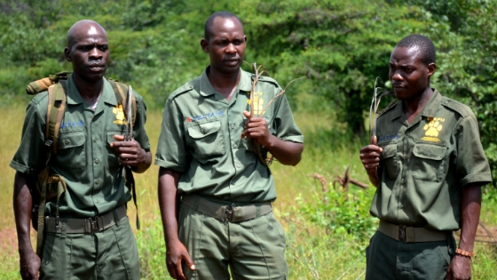 Victoria Falls Anti-Poaching Unit (VFAPU)
