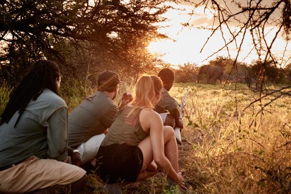 Victoria Falls Walking Safari