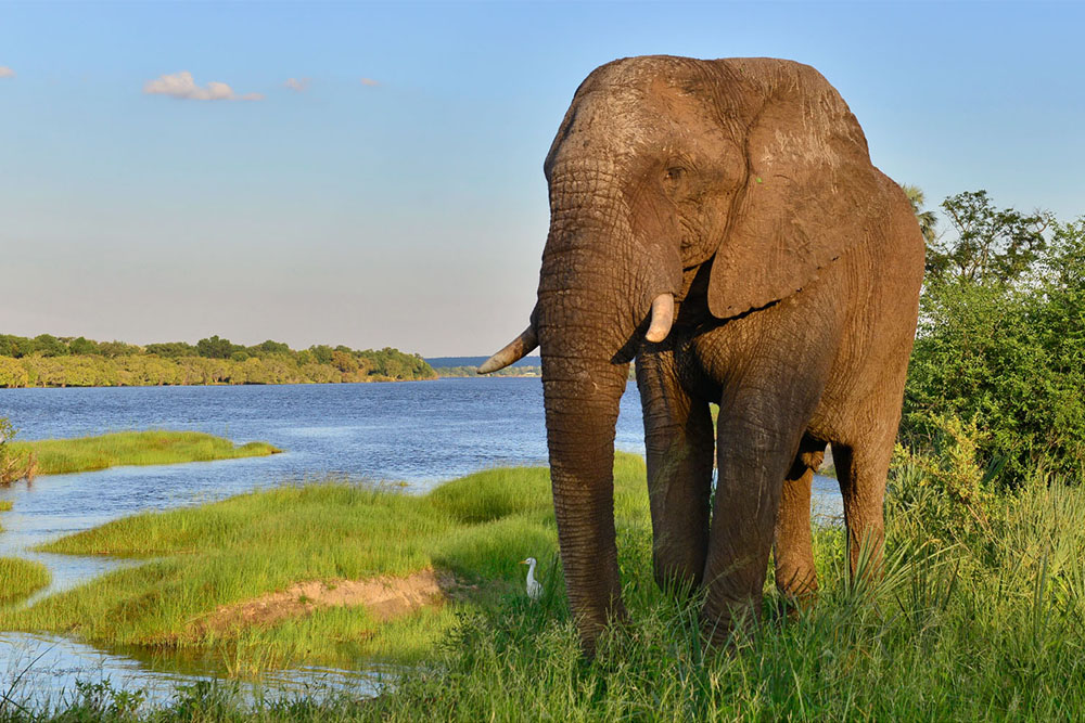 Why Zimbabwe should rank at the top of your travel list this year