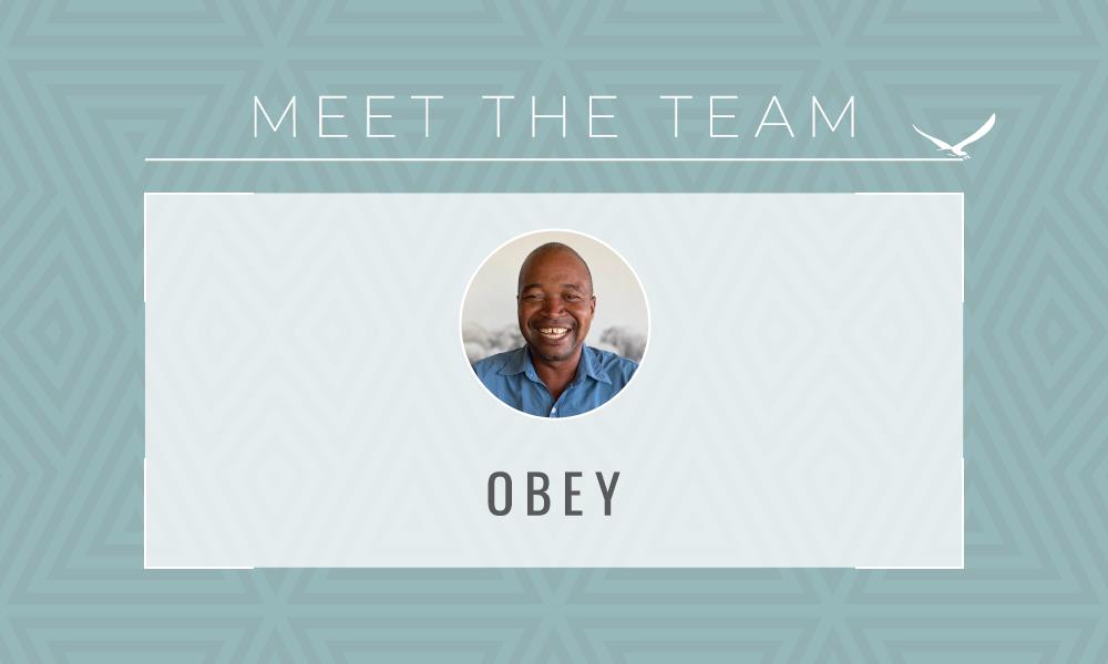 MEET THE TEAM – Obey Mahlupeka