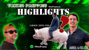 Chinese Super Pigs to Blame for Covid-19?