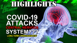 Long-Term Risk: Covid-19 Targets the Central Nervous System?