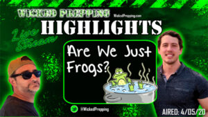 Freedom Begins to Wane: Are We Just Frogs in a Simmering Covid-19 Pot?