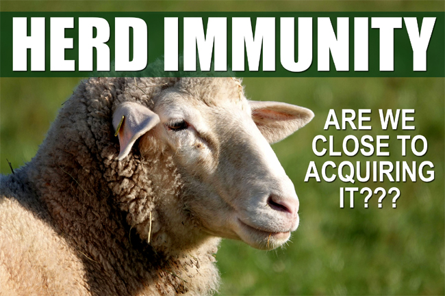 Study Finds High Initial Covid-19 Infection Rate: Are We Close to Herd Immunity?